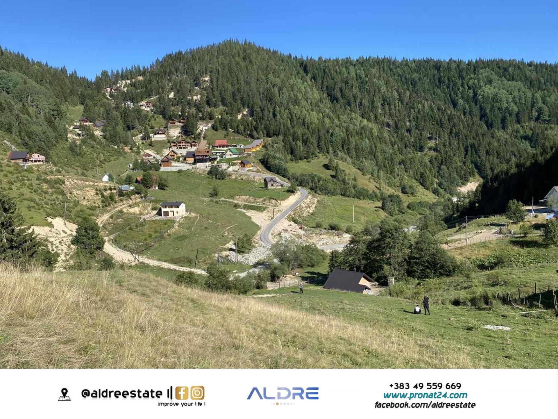 75 ari në Stankaj, Rugove 1355m e rrethuar me pisha